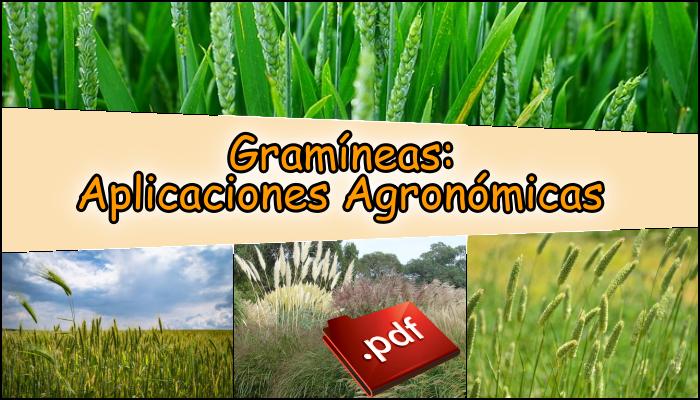 Gramíneas: Aplicaciones Agronómicas