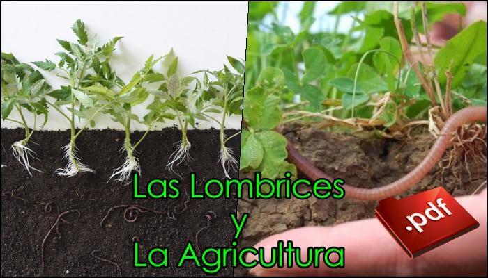 Las Lombrices y la Agricultura